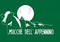 Le Vie dei Lupi Mucche dell'Appennino 18/19/20 Ottobre 2019 – Umbria